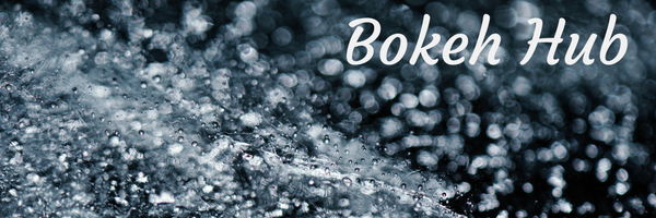 Bokeh Hub